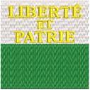 Flagge Vaud midi