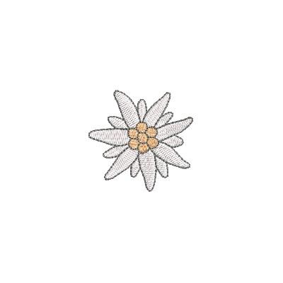 Edelveiss Blüte midi