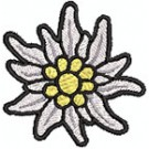 Edelweiss blüte extra