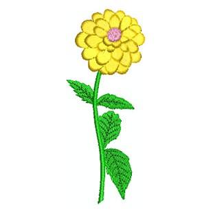 Pompondalie gelb